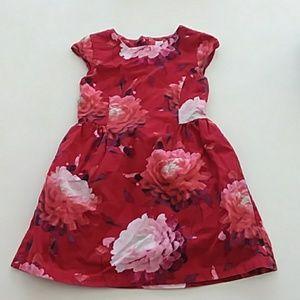 Gap medium 8 red pink floral print cotton dress